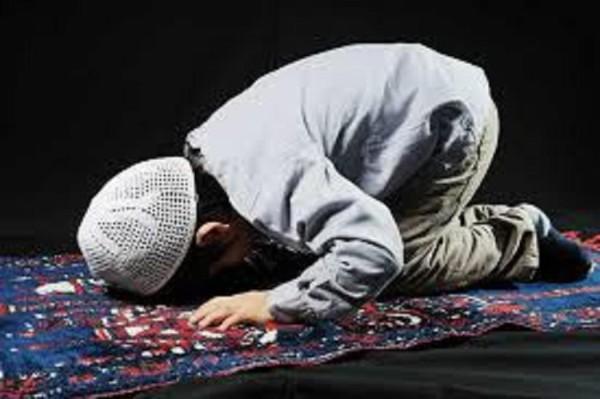O apelu papieża, islamistach i chowaniu głowy w piasek